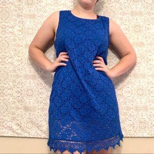 Alfani blue lace shift dress